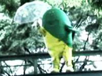 ハジケル・ジャクソン 傘をパラシュート代わりにプレイ【NEW SPORTS】篇