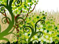 Re: エアコンプロジェクトサイト?インドネシアの森林再生?